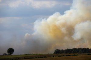 Moorbrand Emsland – Feuerwehr Bremen unterstützt Löscharbeiten